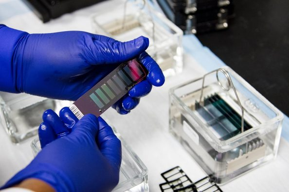 Laboratório científico forense