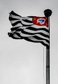Bandeira Estado de São Paulo